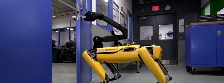 Los perros robot de Boston Dynamics ya saben abrir puertas