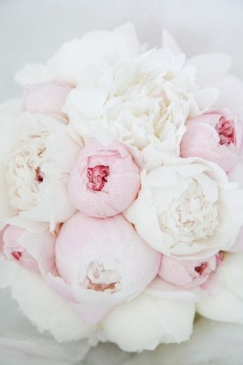 Pale pink and white peony bouquet - if only peonies were in season :(