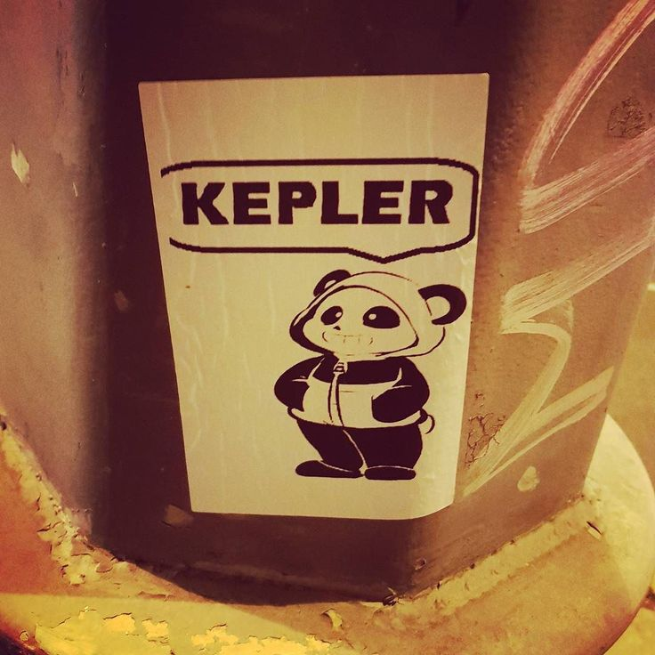 Ez ilyen űrt pásztázó panda #csudapest #budapest #tizenegyker #buda #hungary #mindekozben #televanavárosszerelemmel #budapeststreets #budapestwithlove #budapestnyáronsokkalszabadabb #panda #kepler