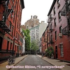 I newyorkesi di Cathleen Schine