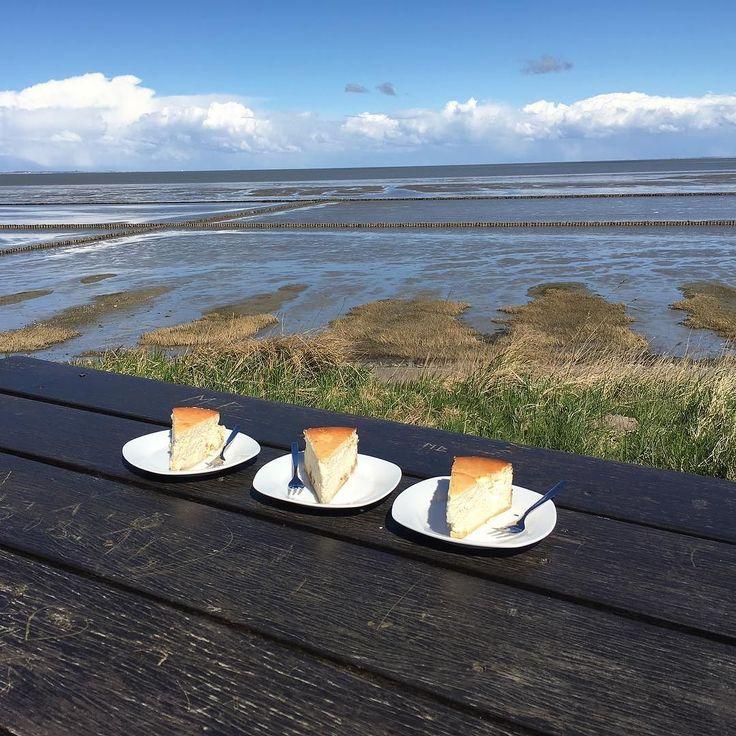 Perfektes Plätzchen zum Kuchen essen. #sylt #keitum #käsekuchen #cheesecake #watt #wattenmeer by mahrko