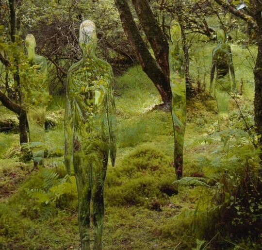 Rob Mulholland, a scottish sculptor who created this series of mirrored, reflective sculpted figures called 'Vestige' within the forest around the David Marshall Lodge, Scotland. Camouflaged by their surroundings, they absorb their environment and reflect the constant flux of movement and light day by day.