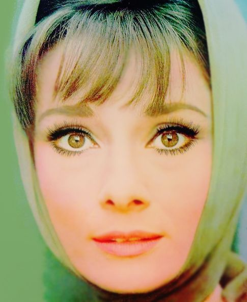 Audrey Hepburn such a beautiful face. Like a cute pixie.