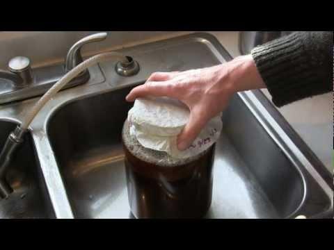 How to make Kombucha - Fermented Tea drink