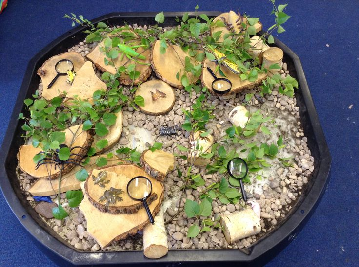 Minibeast inspired tuff spot for EYFS