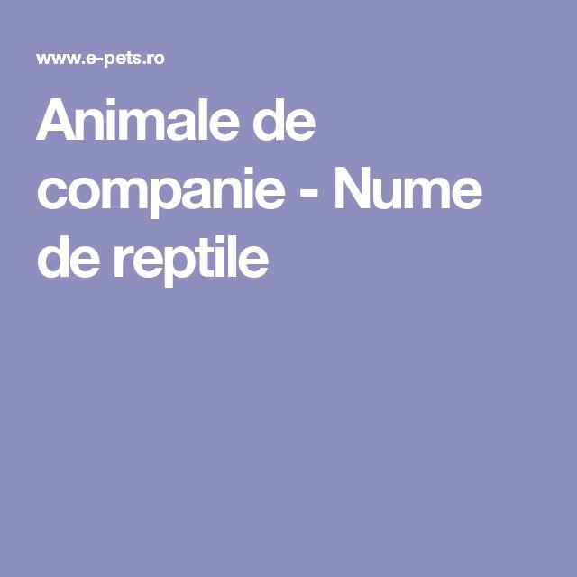 Animale de companie - Nume de reptile