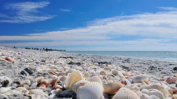 """Sanibel Island in Flordia, known as one of the """"Shell Islands"""""""