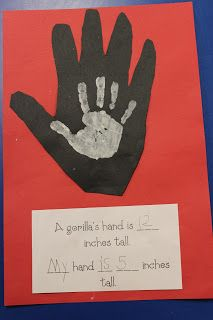 """Measurement!  Trace and cut a gorilla's paw (12"""" long), then do your own hand on top and measure it (around 4"""" if you're a kindergartner).  Cute and fun!"""