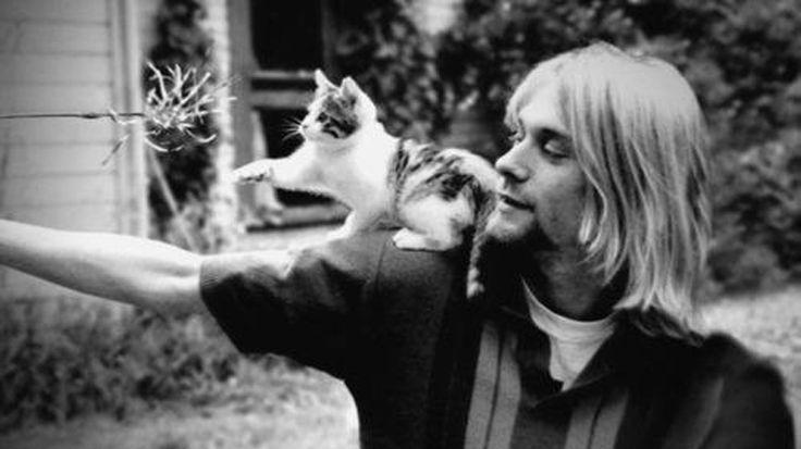 Kedisever ünlüler listelerinde Quisp isimli kedisiyle yer alan 90'ların efsanevi müzisyeni Kurt Cobain'in Amerikan gizli servisi CIA tarafından öldürülmüş olabileceği iddia edildi. Detaylar ajanimo.com'da.. #ajanimo #ajanbrian #hayvan #animal