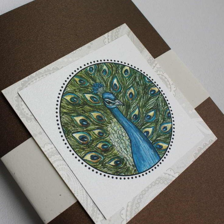 Wedding Invitation Ideas Okay So Peacocks Are Kinda Random But The Jewel Tones