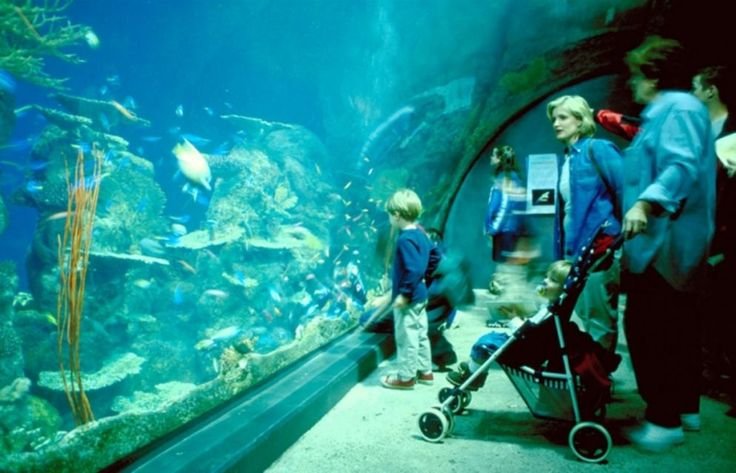 Do Dubrownika z dziećmi // Dubrovnik with kids #Croatia #Chorwacja #Dubrovnik http://crolove.pl/do-dubrownika-z-dziecmi/