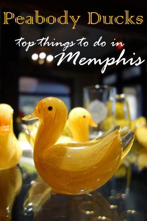 There's more to Memphis than Elvis. Try the barbecue, listen to blues, check out the National Civil Rights Museum, visit the famous recording studios, and watch the march of the ducks at the Peabody.  Here's a list of Memphis Must-Dos for your next trip.
