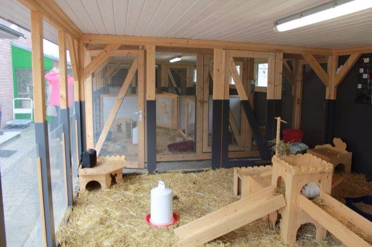 Bunny enclosure pic 1 of 3 house bunny set ups for Amazing rabbit cages