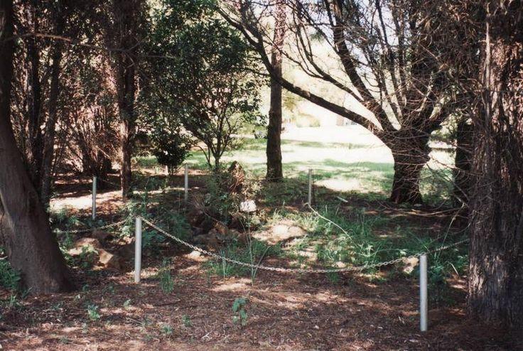 1. Oorsig Volgens die skenker van hierdie grond. Meneer Piet Meyers was sy grootvader JOHAN GEORGE MEYER 'n lid van die 1836 -1838 GROOTTREK wat hierlangs verbygegaan het.   Tydens 'n bevalling is een van die trekkermoeders en haar baba oorlede en hulle is op hierdie plek langs mekaar ter ruste gelê. Hierdie gedenteken is opgerig deur die Ned. Geref. Gemeente Alberton-Suid in November 1976?