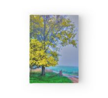 Golden Acacia Wattle Tree in Full Bloom Hardcover Journal