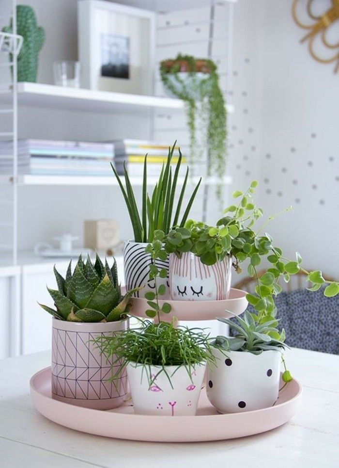 Cute Indoor Plant Room Decor Idea