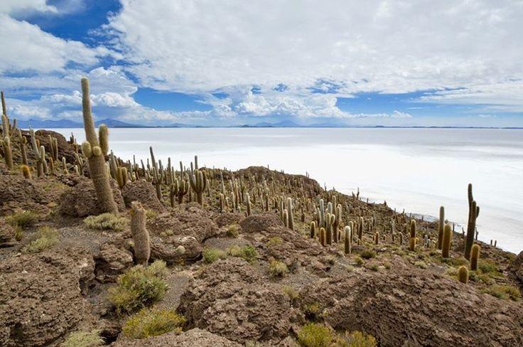"(@welove_world) sur Instagram: ""Uyuni Salar, Bolivia #bolivia #salar #uyuni  #sal #nature #naturelovers #naturelover…"""