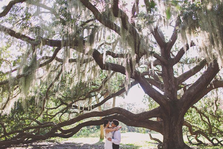 Kaitie and John's Handmade Vintage Inspired Florida Wedding. By Stacy Paul Photography