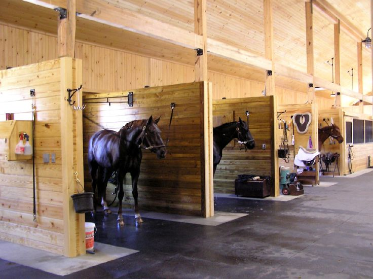 Wash stalls with overhead hose booms - Groom stalls - all with built in shelving