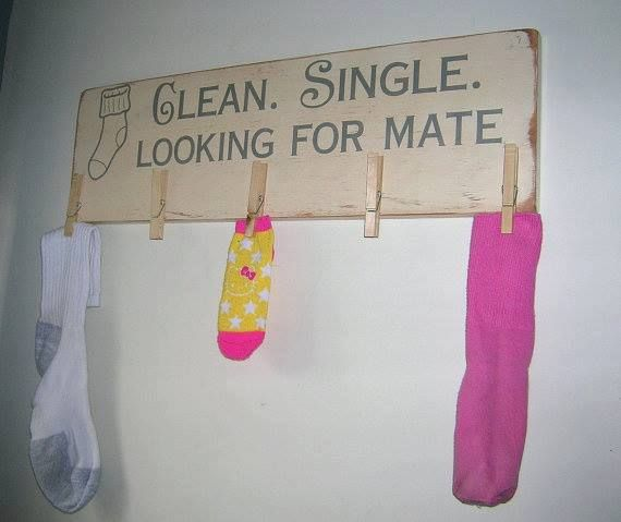 Clean, Single and looking for a Mate!  Very cute laundry room sock holder.  This is hilarious.