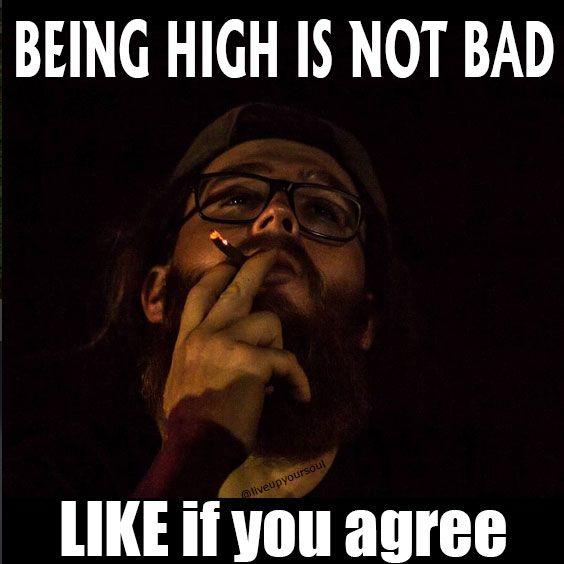 Being High is Not BAD!!! #cannabis #marijuana #stoners #weed #ganja #herb #high #stonergirls #weedsmoker #smokeweed #smokeweedeveryday #hightimes #cannabisculture #skunk #haze #sativa #indica #weedplant #weedstagram #budporn #weedporn #stonergirls #love