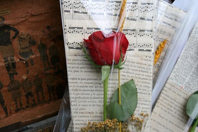 Lovely #Sant Jordi rose by BCNinternet, via Flickr