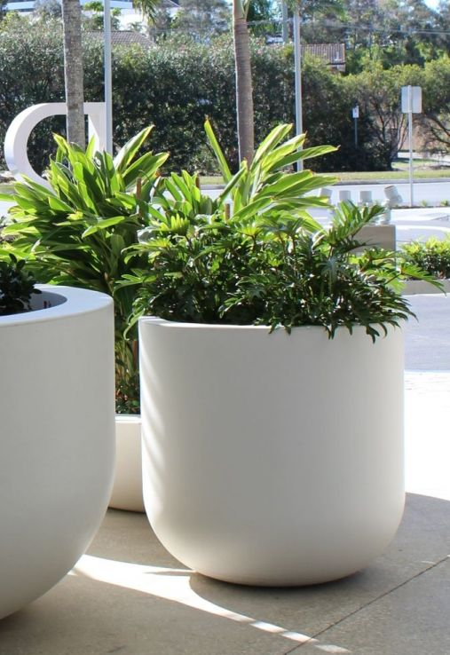White Tall U Bowl Planter by Quatro
