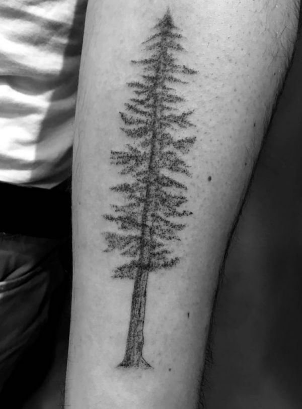 die besten 25 baum tattoo ideen auf pinterest baum tattoo klein lebensbaum tattoo und baum. Black Bedroom Furniture Sets. Home Design Ideas