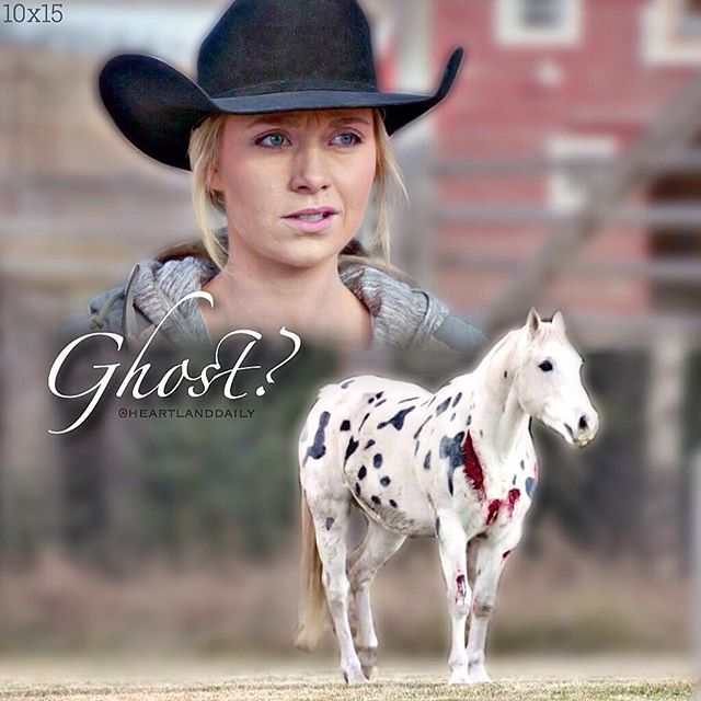 How did you guys like the new episode?😋 • #heartland #cbc #hl #amyfleming #ambermarshall #ghost #10x15 #1015 #horse