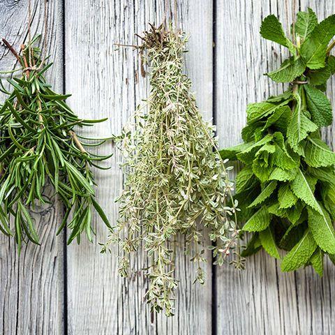 Kräuter trocknen ist die beste Alternative, auch im Winter nicht auf den Geschmack von Oregano, Thymian und Basilikum zu verzichten. Wir zeigen, wie's geht.|VAPIANO
