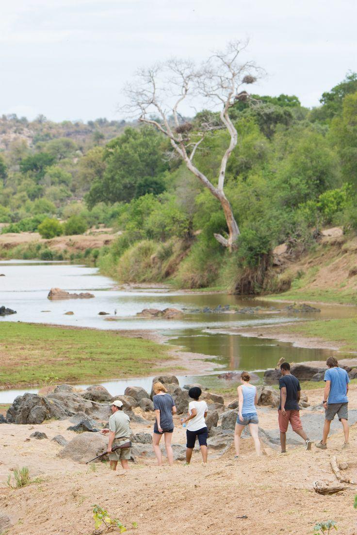 Enjoy a bushwalk through the Greater Kruger National Park during sunrise. #SefapaneMagic