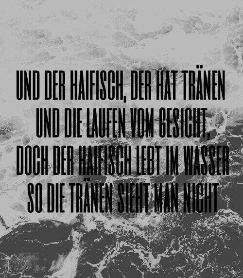 """Rammstein ,,Haifisch"""""""