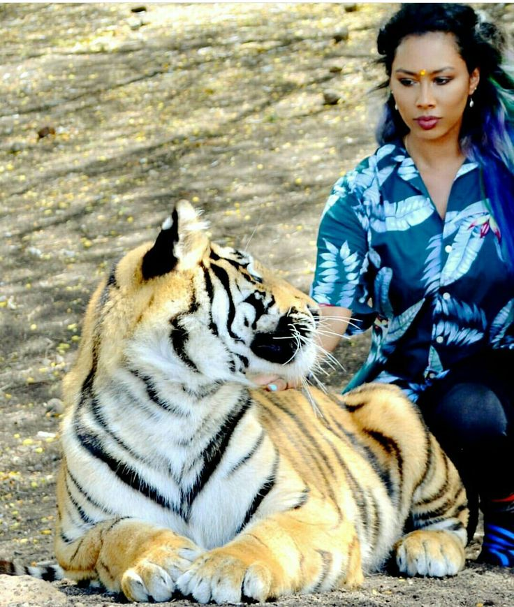 Derae rai in Mauritius posing with a tiger at Casela