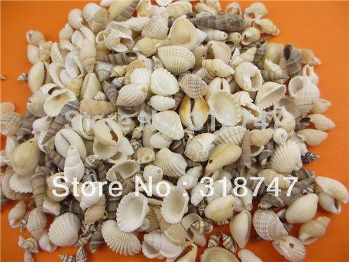 50g (około 80 sztuk) Moda Plażowa Muszle, morze Muszli dla craft Decor Moda Biżuteria 056005001