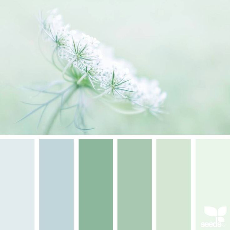 today's inspiration image for { color nature } is by@lisaridgelyphotography