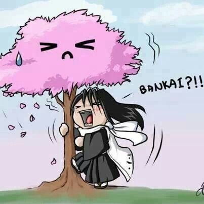 Byakuya did you hang out with Kyoraku again. You should know he would get you drunk. And your pride allows you this?? (Ps Rukia took the pic)