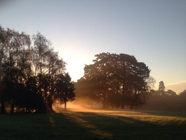 Sunrise in Singleton Park (via @pippaappip)