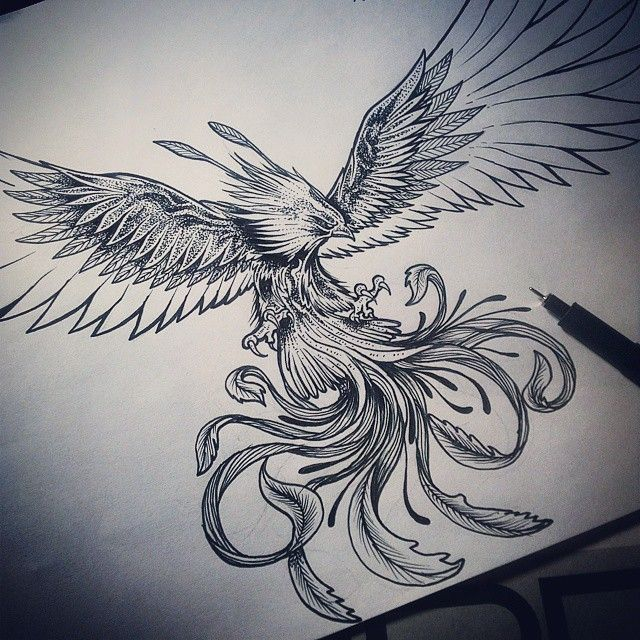 Terminando Ave Fenix A Pedido Cavtattoo Saludos Cavtattoo Sentimiento Arte Emocion Diseño Ilus Ave Fenix Dibujo Ave Fenix Tatuaje De Fénix Para Hombre