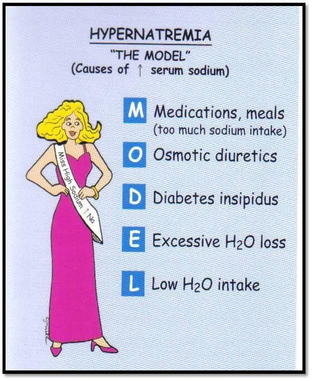 """Nursing Mnemonics: Hypernatremia """"The MODEL"""""""