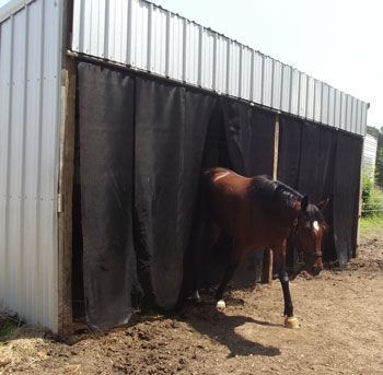 Livestock Curtain
