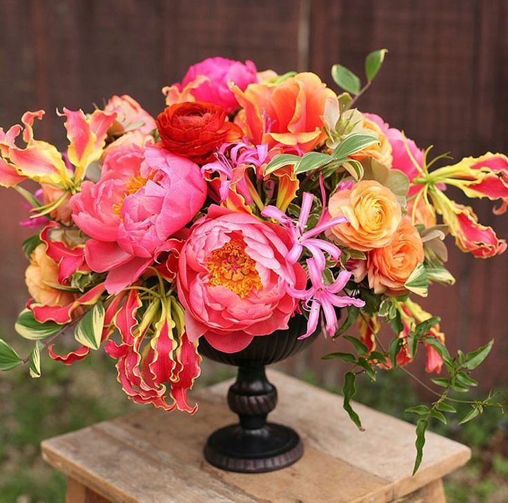A gorgeous burst of color with pink peonies, roses, and gloriosa lilies by @floralverde in our Lion Handle Urn.