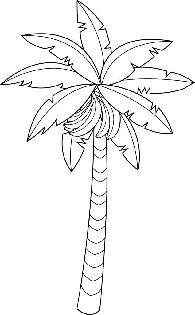 Banana Coloring Pages Tree Coloring Page Fruit Coloring Pages
