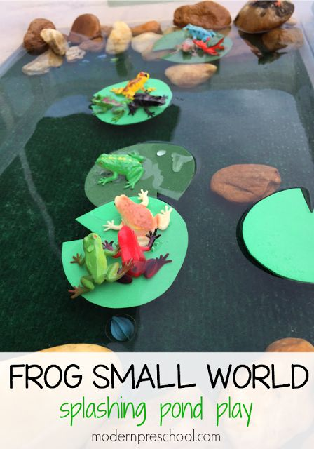 Frog small world water play for preschoolers | Modern Preschool