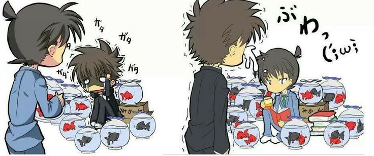 Poor kaito.. haha