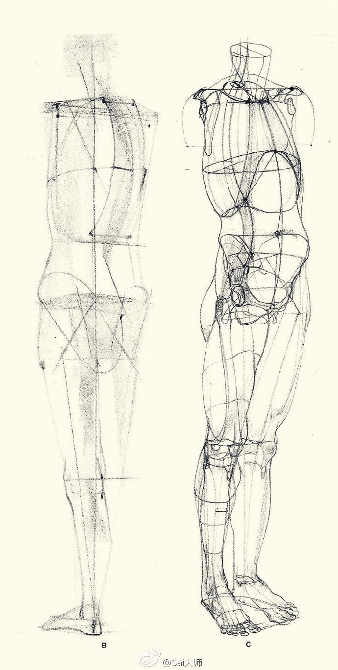 76 best Tutorial Anatomia images on Pinterest | Drawing tutorials ...