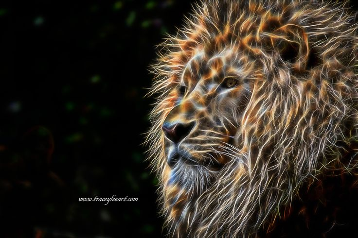 Fractal male lion - King of the Jungle by Tracey Everington of Tracey Lee Art Designs