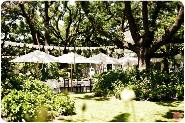 Plum Tree Weddings | Wedding blog featuring simple stylish modern wedding ideas: Tea Under the Trees - South African Garden Wedding