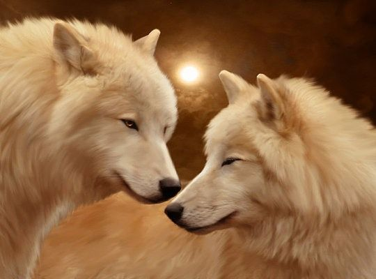 I LOVE WOLF :D  Must-see Digital Art by Elena Dudina