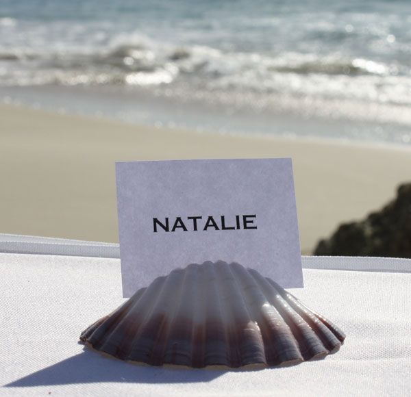 Price shell holder assorted shells will supplied your order They come with placecard photo this display purposes only Bring beautiful beach into your wedding reception tables with these stunning scallop shell placecard holders Each shell approximately 7-9cm size natural complety unique slit perfectly into each shell simply your placecards into best thing that easily print your guest names paper that