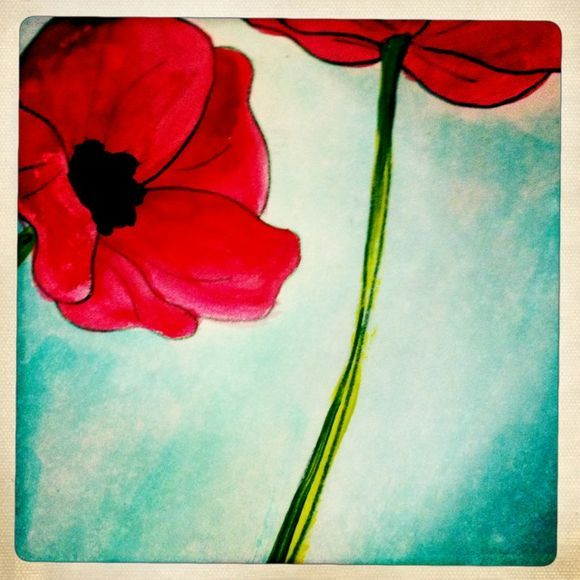 poppies - art